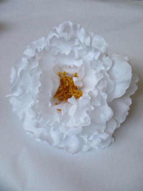 N Peonia blanco1