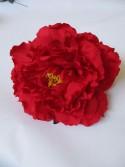 N Peonia rojo3